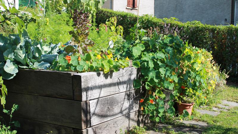 Un jardin à Montreux